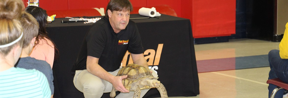 More animals from the wildlife and reptile presentation at Calloway's AIF.