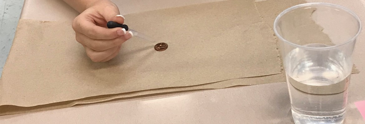 "Middle school students used their knowledge gained over the scientific method to complete a lab and answer the question ""how many drops can a penny hold?"""